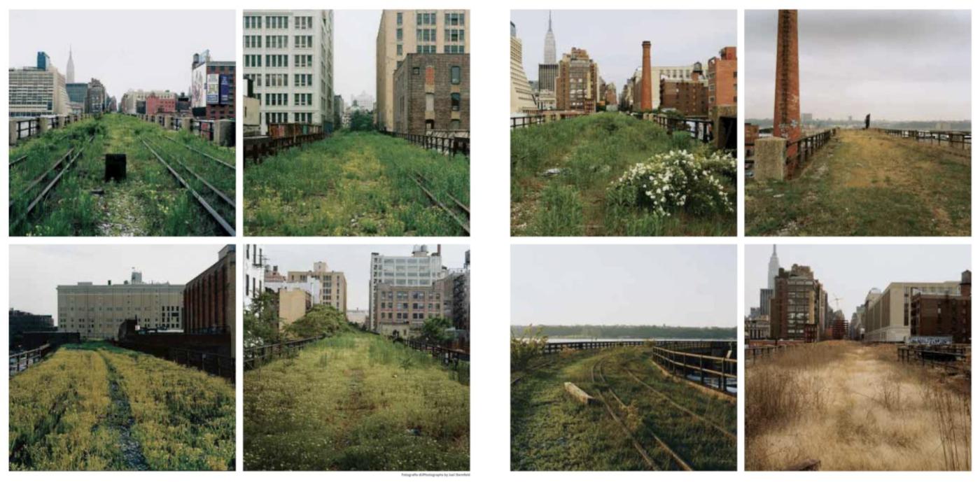 Diller Scofidio + Renfro, High Line Park, New York City, 2009 - via Domus 884