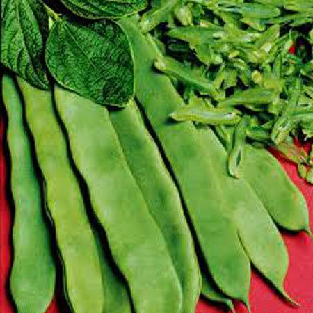 flat beans 1kg