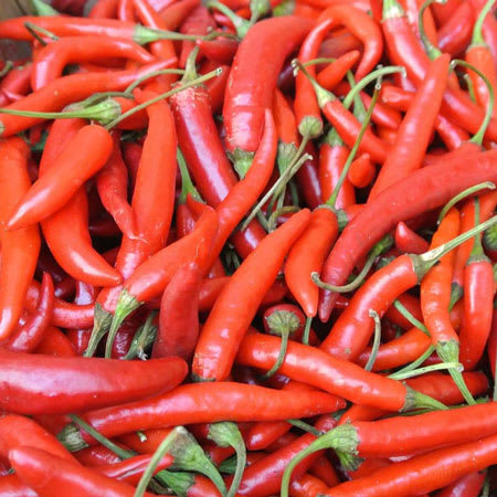 red chili pepper 1kg