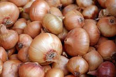 spanish onion 1kg