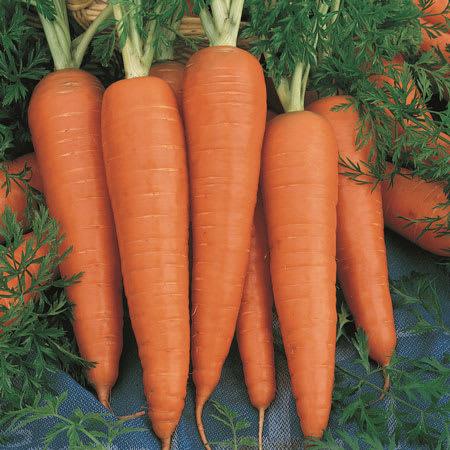 carrot 1kg