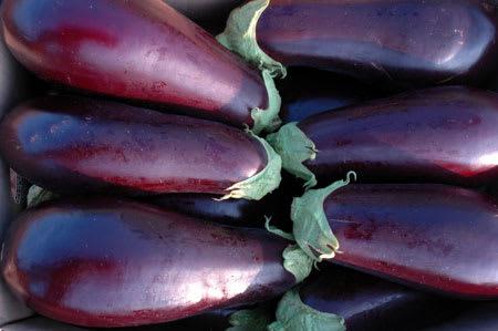 aubergine 1kg