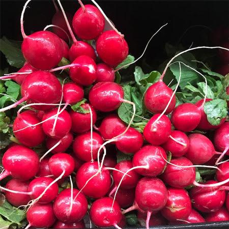 small red radish bunch