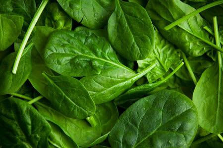 spinach bunch
