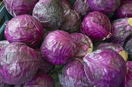 red cabbage 1kg