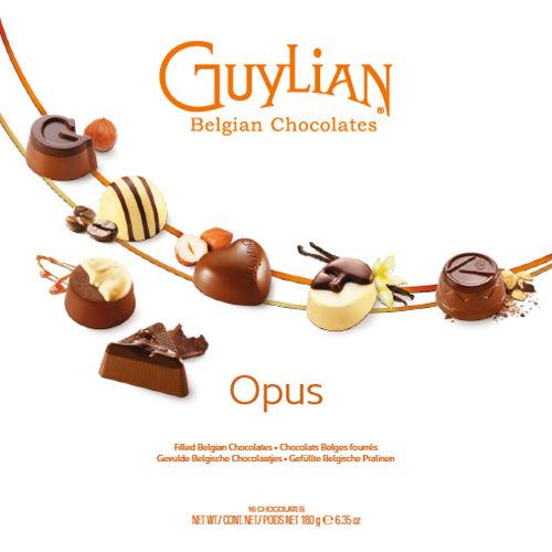 Luxury Assortment Opus Box