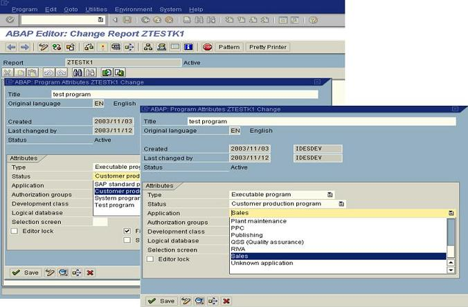 ABAP Program Attributes