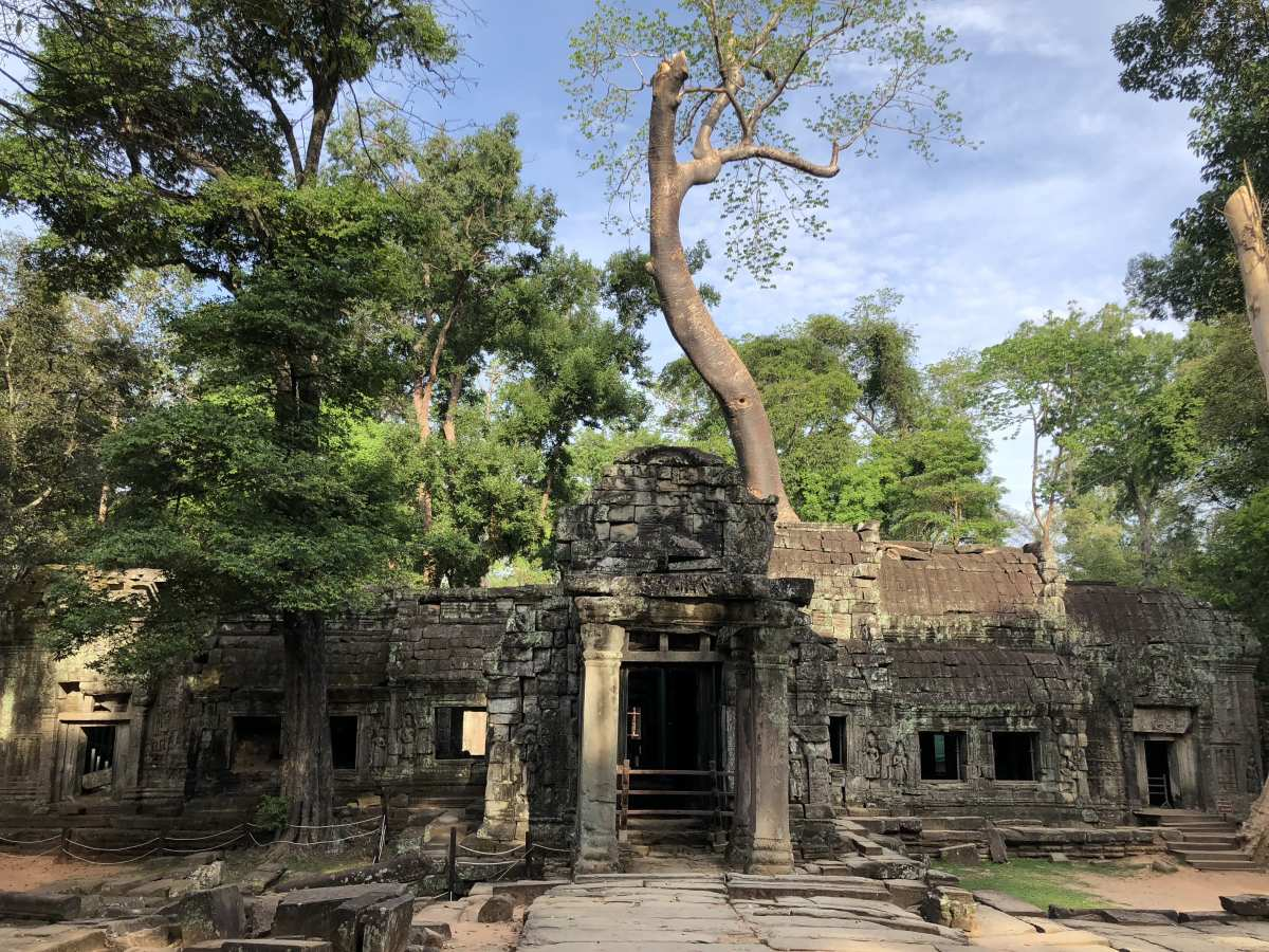 Ta Prohm Temple