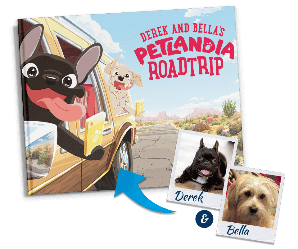 Welcome to Petlandia