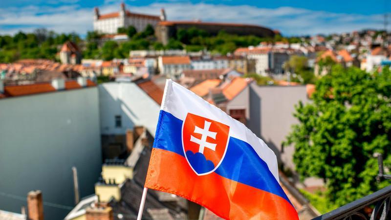 В каких случаях нужна виза в Словакию