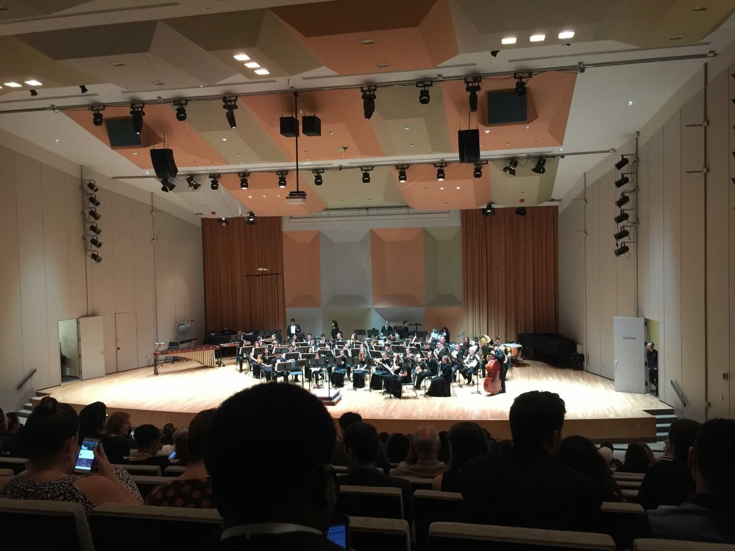 Picture of a classical orchestra