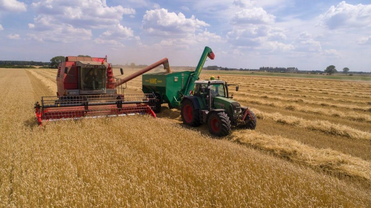 A tractor on fields of grain