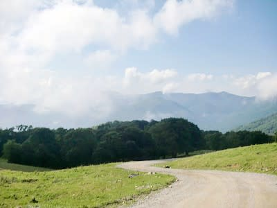 Cataloochee's winding road to heaven