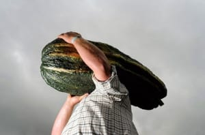 A Giant Zucchini - oddstuffmagazine.com
