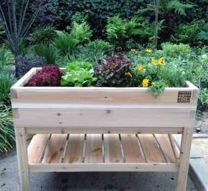 Xelevated-raised-bed-tabletop-garden-minifarm-box-gardenista_isrgei