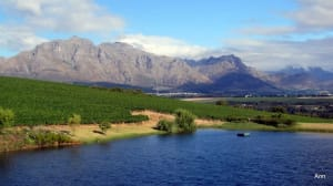A Sip & A Taste of South Africa