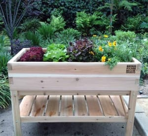 Xelevated-raised-bed-tabletop-garden-minifarm-box-gardenista_isrgei