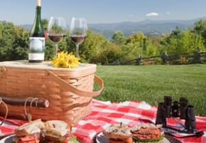 Picnic with a view at The Swag