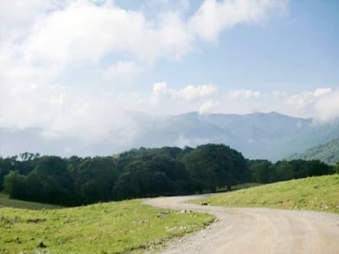 Cataloochee's winding road to heaven