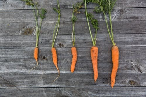 carrots and juicing
