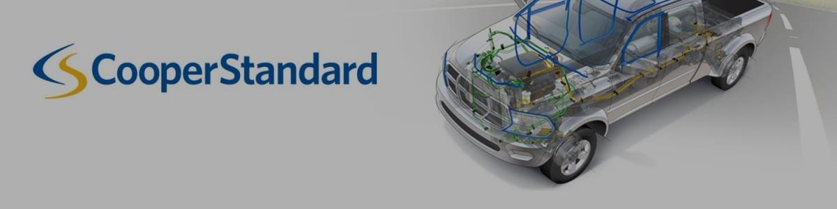 Cooper-Standard Automotive Brasil Sealing Ltda background image
