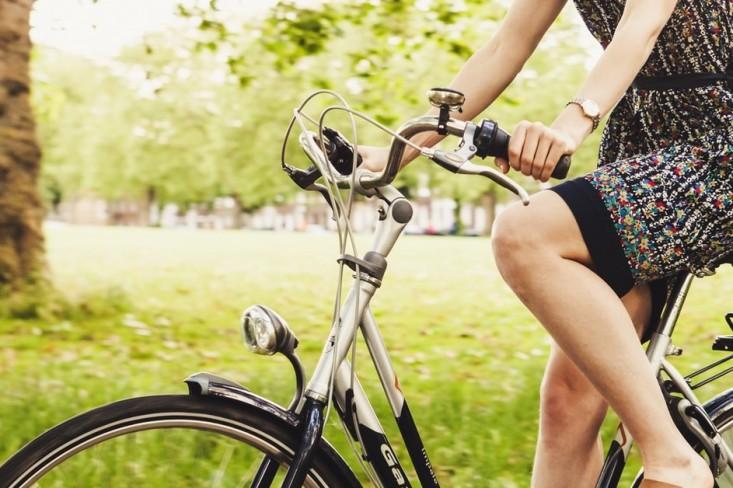 Fahrrad-Diebstahlschutz