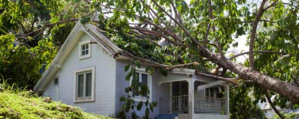 Sturmschäden an Haus und Wohnung: Wann zahlt die Versicherung?