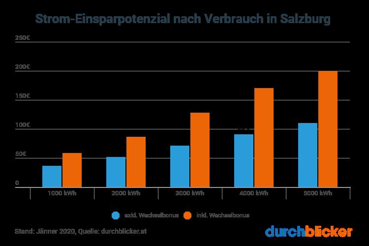 Die Partnersuche der Salzburger Nachrichten