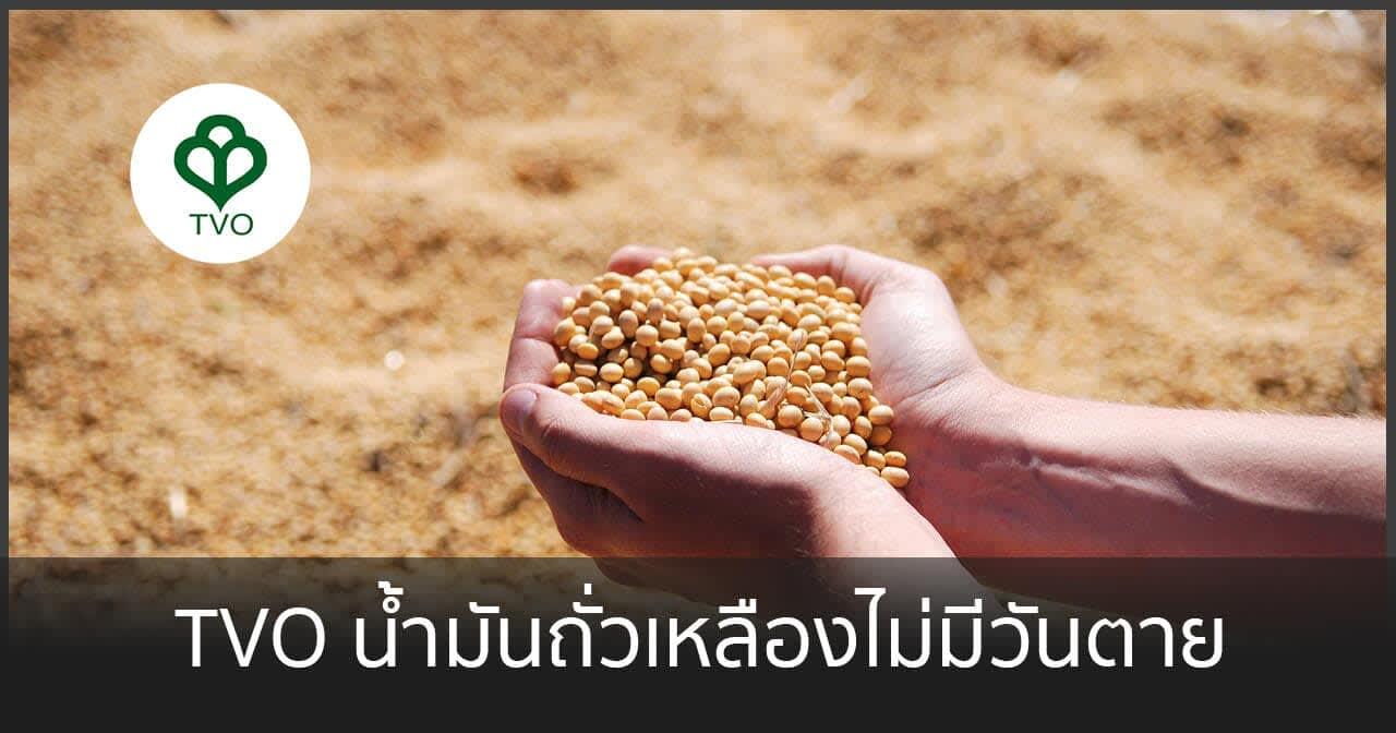TVO น้ำมันถั่วเหลืองไม่มีวันตาย