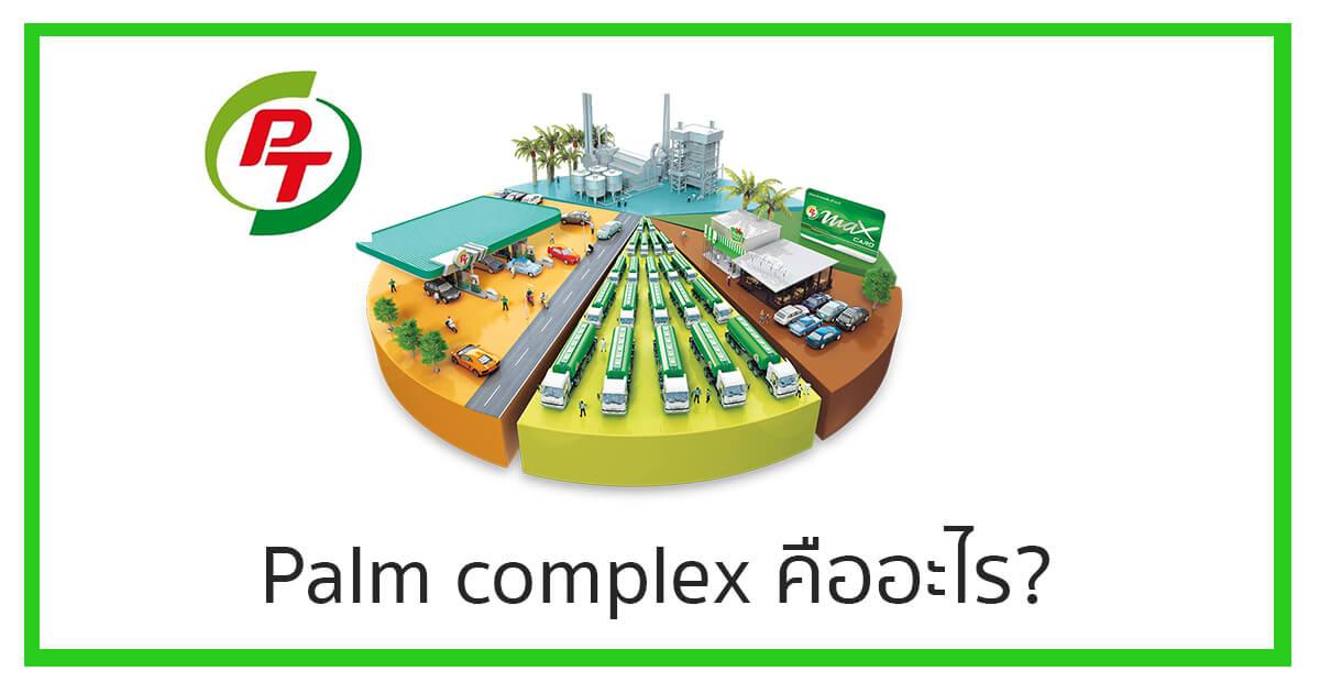 Palm complex คืออะไร?