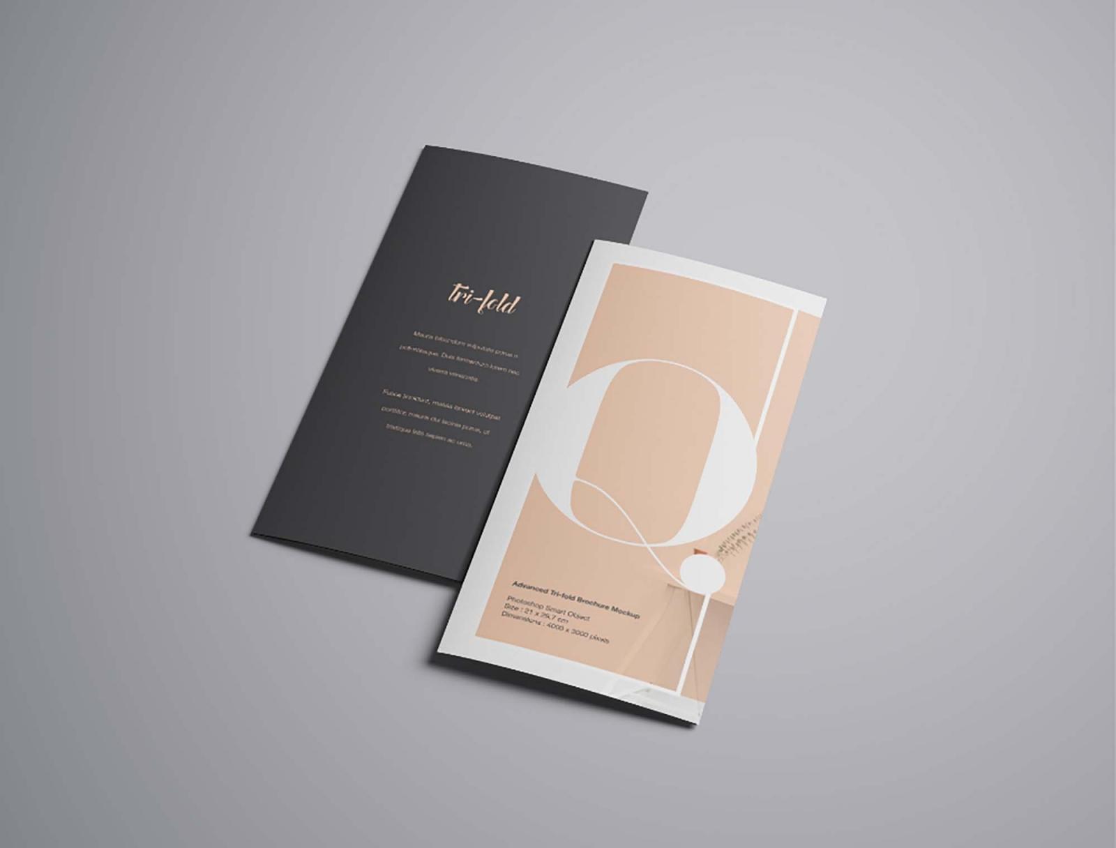 Tri fold Flyer Cover Mockup
