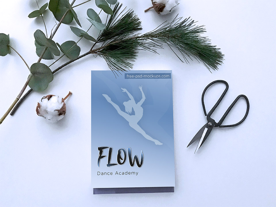 Flow Dance Academy Brand Poster Mockup PSD