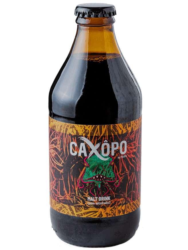 Praxis Caxopo