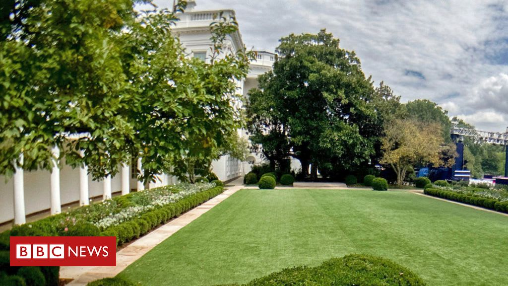 Petition urges US First Lady Jill Biden to restore White House garden to 'former glory'
