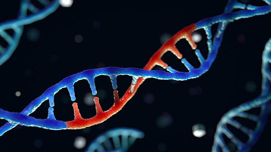 Scientists Have Created A New Gene-Editing Tool That Could Rival CRISPR