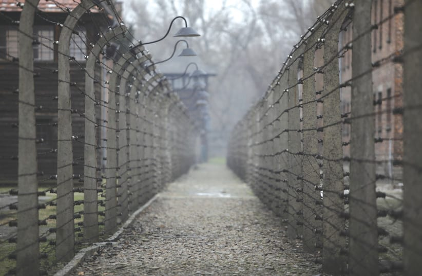 Surviving former Nazis give their 'Final Account' in new documentary