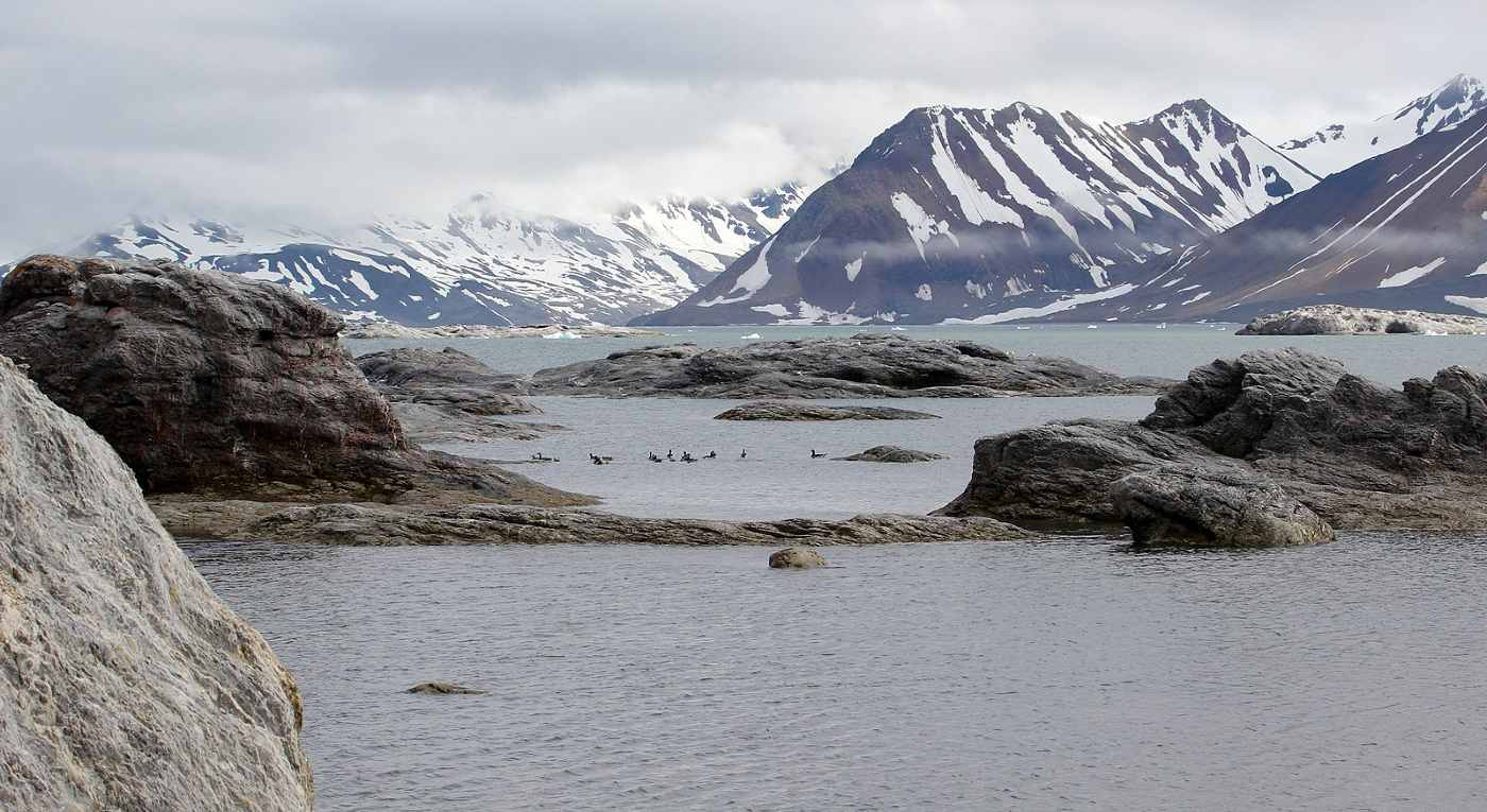 Norway Closes Down Its Last Arctic Coal Mine and Transforms Land into 'Best Managed' National Park