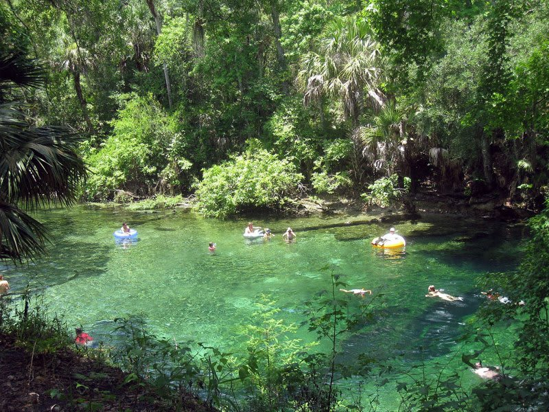 11 Springs in Central Florida to Enjoy a Piece of Natural Paradise