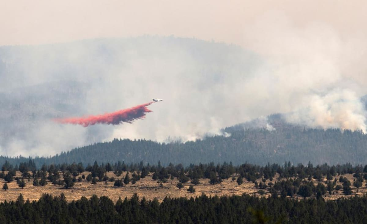 The Bootleg Fire in Oregon is so large, it's creating its own weather