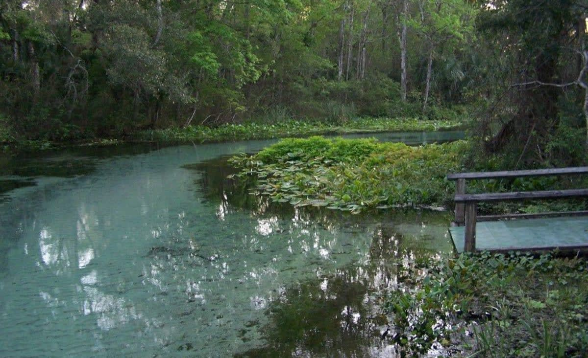 This Natural Lazy River in Florida is The Perfect Weekend Escape