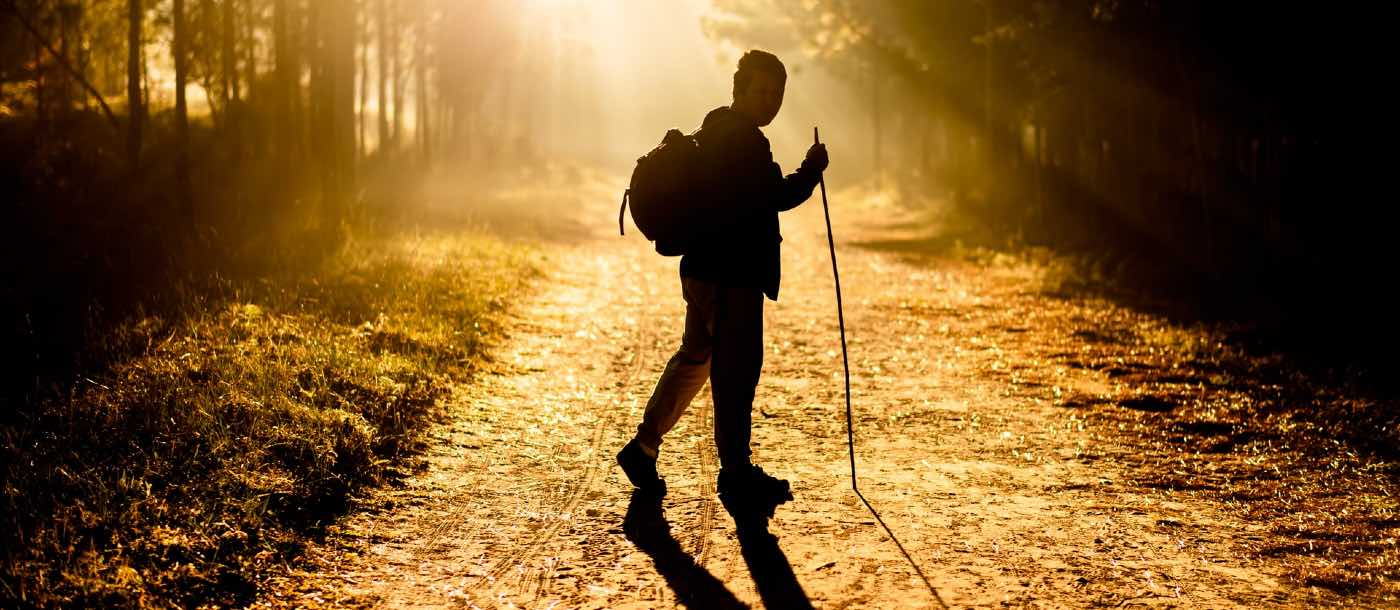 Just Go Walk: Studies Show Normal Walking Can Add Years to Your Life and Reduce Disease Symptoms