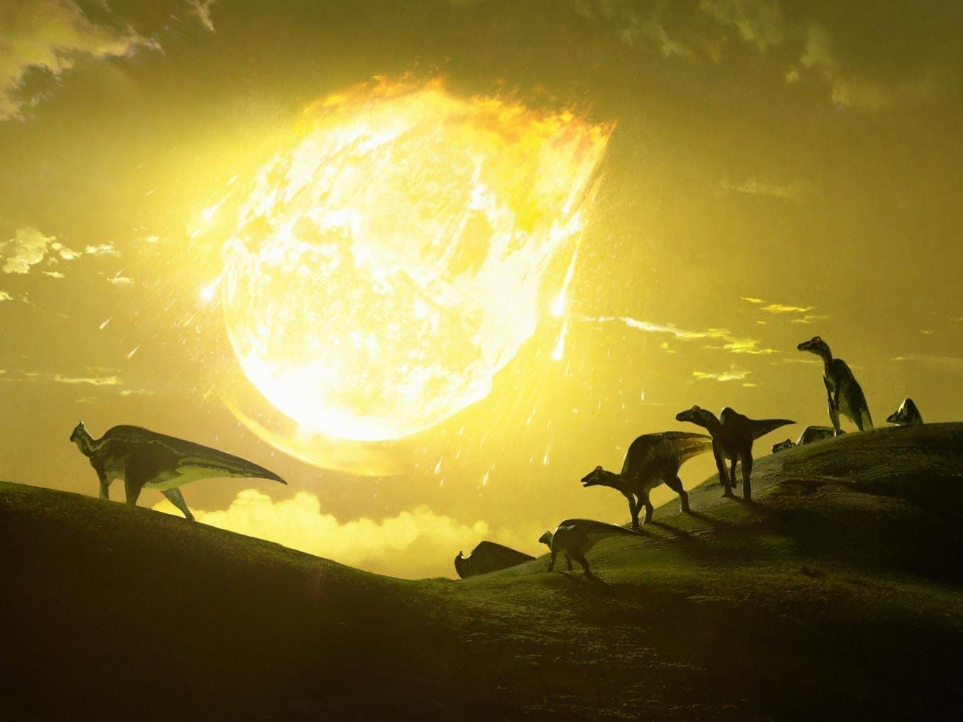 The space rock that doomed the dinosaurs was shrapnel from a comet that flew too close to the sun, a Harvard study suggests