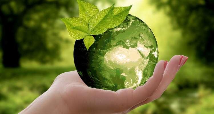 Himno al medio Ambiente