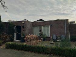 WT1_Heemskerk_1974