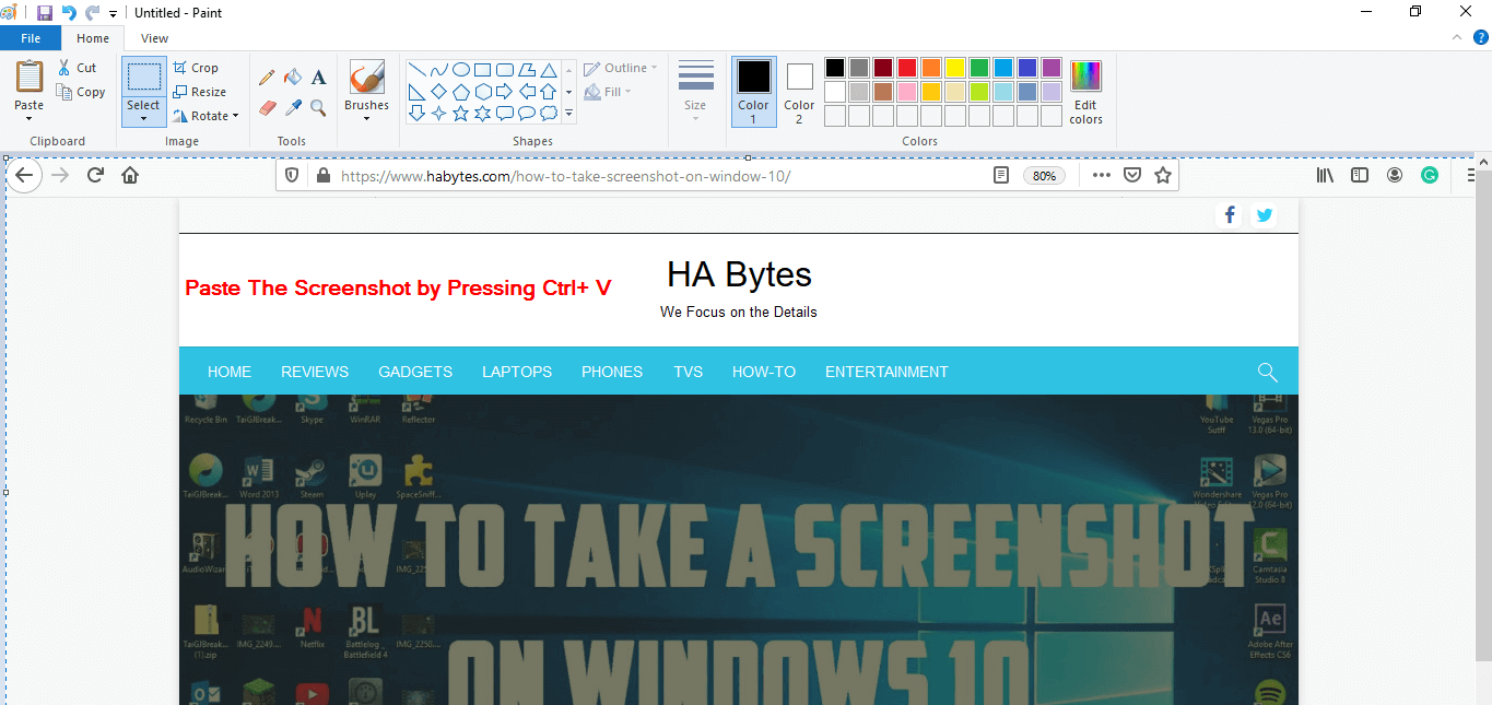 Pasting the screenshot in paint