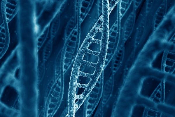 Вчені встановили генетичний ризик раку передміхурової залози