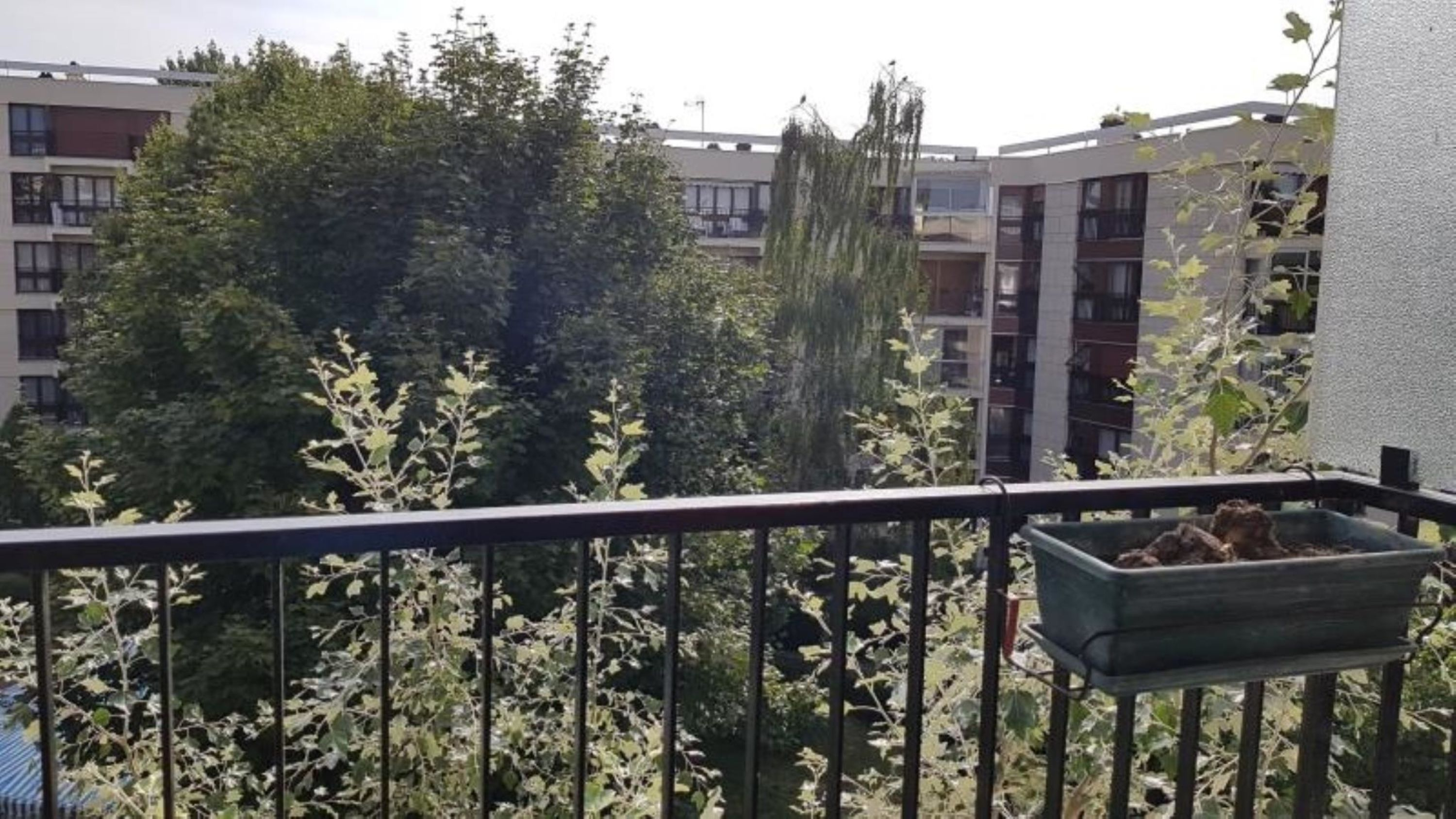 agence immobilière sevres 92 le chesnay 78 achat vente location appartement maison immobilier LMHT ANF QCIKZKKU