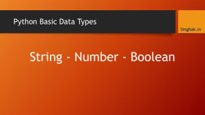 Python – Basic Data Types