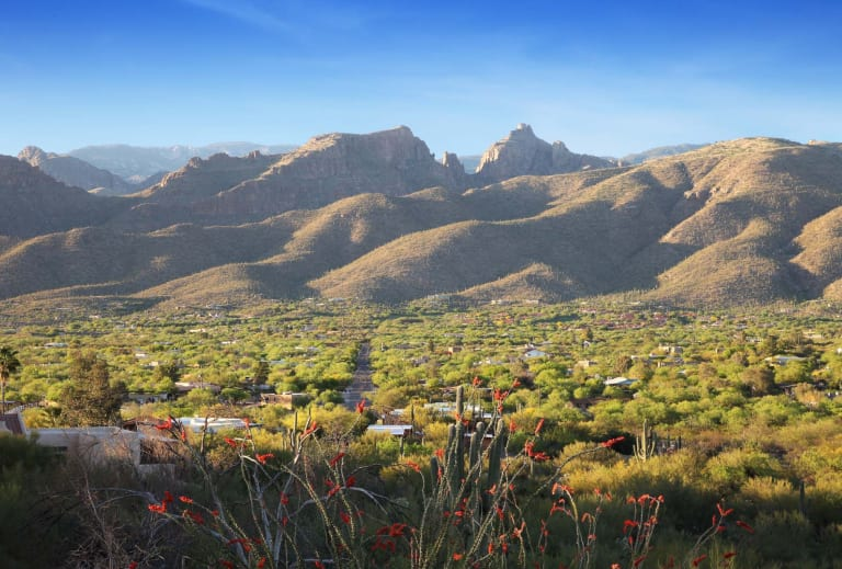 New Home Construction In Tucson   Home Builders   Pulte