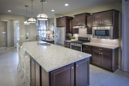 New Homes at Bridgetown in Fort Myers, Florida   Pulte